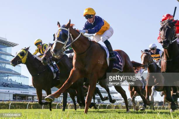 Blushing Tycoon ridden by Daniel Moor wins the Racing.com Plate at Flemington Racecourse on May 22, 2021 in Flemington, Australia.