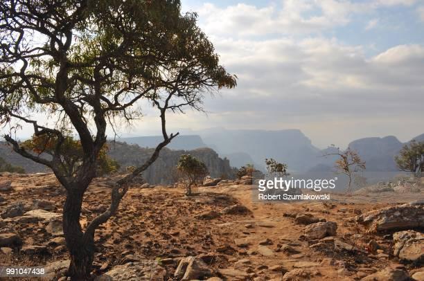 Blyde River Canyon 1