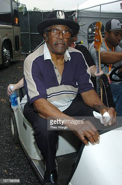 Bo Diddley during Little Steven's Underground Garage Festival Presented by Dunkin' Donuts Backstage August 14 2004 at Randall's Island in New York...