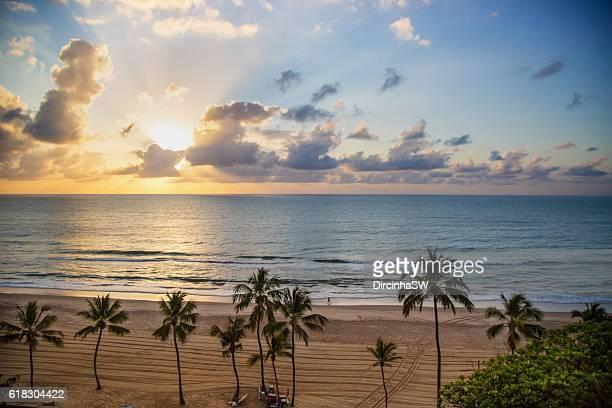boa viagem beach - recife - pernambuco -brazil. - recife stock-fotos und bilder