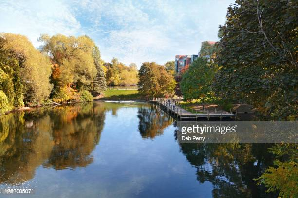 boardman river in traverse city, michigan in the autumn - michigan stock pictures, royalty-free photos & images