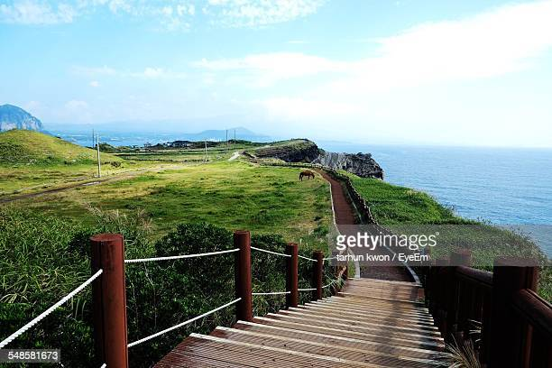 boardwalk along magnificent cliffs overlooking sea - jeju island stock pictures, royalty-free photos & images