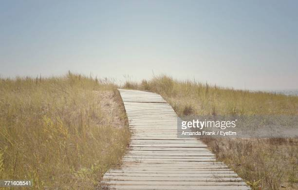 boardwalk amidst grass against clear sky - amanda marsh stock pictures, royalty-free photos & images