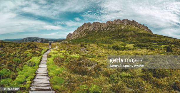 boardwalk amidst moss covered landscape against cloudy sky - tasmania stock pictures, royalty-free photos & images