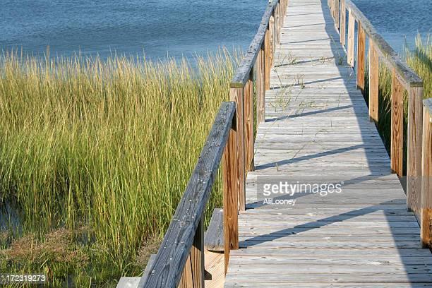 Boardwalk and water view in Cape Cod