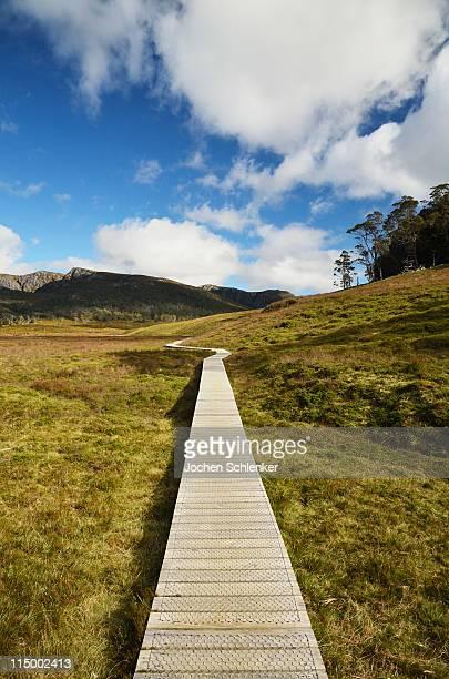 Boardwalk at Cradle Mountain