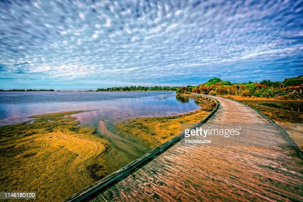 boardwalk at mallacoota - mallacoota stock pictures, royalty-free photos & images