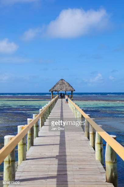 Promenade in Maui Bay op Viti Levu, Fiji-eilanden