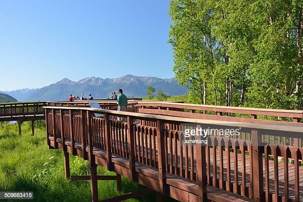 Promenade au Potter Marsh à Anchorage