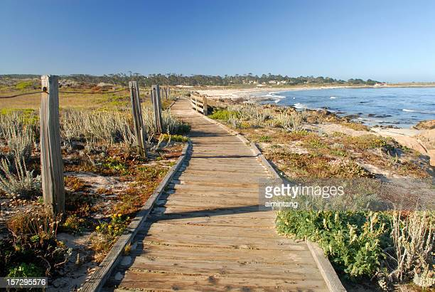 boardwalk at spanish bay of monterey in california - monterrey stock pictures, royalty-free photos & images