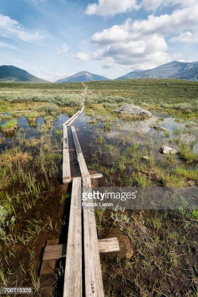 boardwalk in marsh near mountains - norrbotten province stock pictures, royalty-free photos & images
