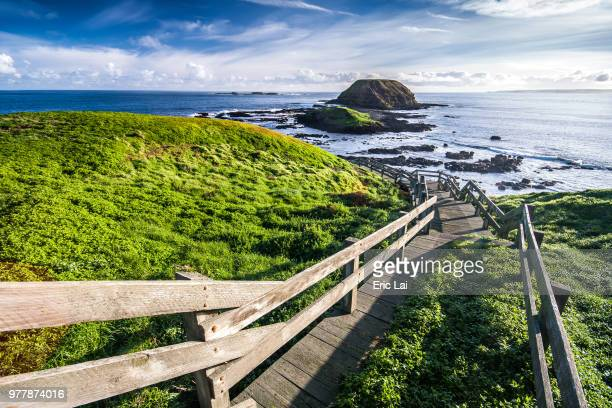 boardwalk in point grant, phillip island, victoria, australia - phillip island stock pictures, royalty-free photos & images