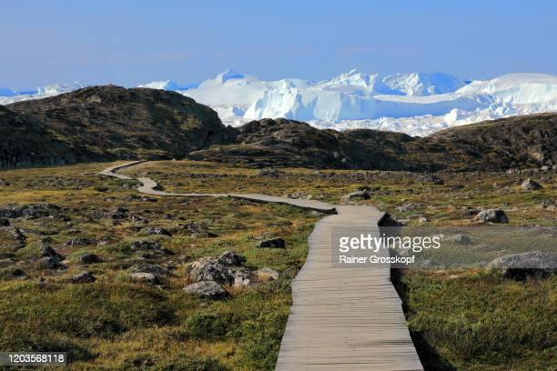 boardwalk leading throuh tundra in the direction of huge icebergs - rainer grosskopf stockfoto's en -beelden