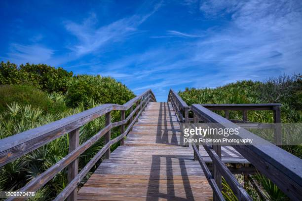 boardwalk leading to playalinda beach - titusville florida stock pictures, royalty-free photos & images