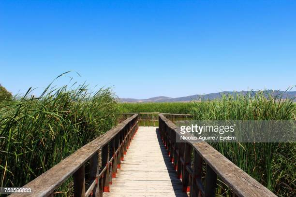 Boardwalk On Field Against Clear Blue Sky