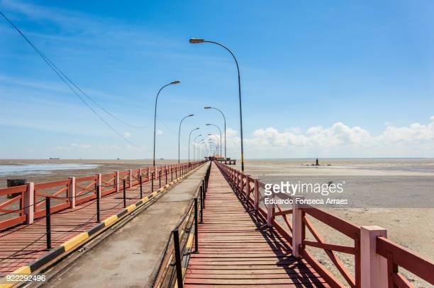 boardwalk on the amazon river - amapá state ストックフォトと画像