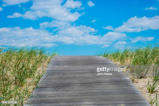 boardwalk over the dunes to state beach in edgartown - martha's_vineyard stock pictures, royalty-free photos & images