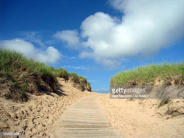 boardwalk - leelanau county  michigan stock pictures, royalty-free photos & images