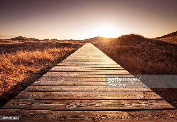 Boardwalk durch die Dünen