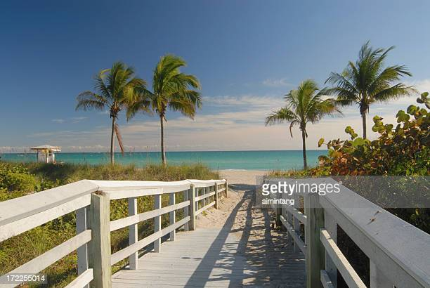 boardwalk to beach in florida - gulf coast states stockfoto's en -beelden