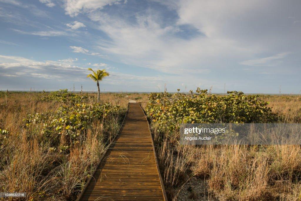 Boardwalk to Beach on Sanibel Island, Florida, United States : Foto de stock