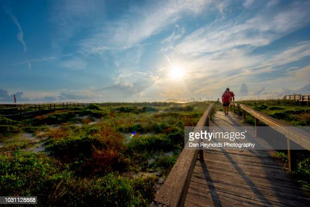 boardwalk to beach - nature reserve stock pictures, royalty-free photos & images
