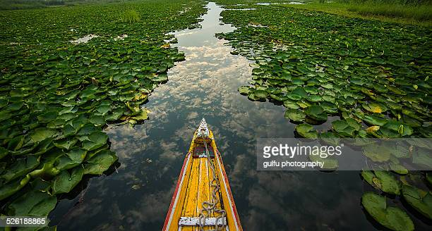 boat and sky - kashmir valley stock photos and pictures