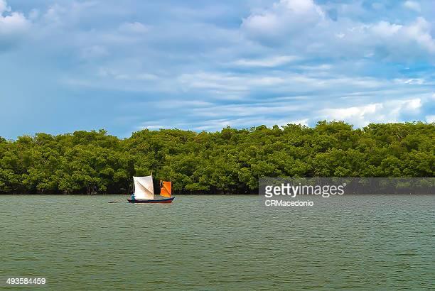 boat at the vaza-barris river - crmacedonio imagens e fotografias de stock