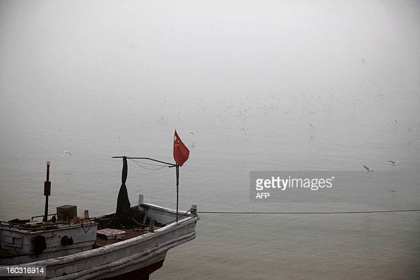 A boat berths in the heavy smog in Qingdao east China's Shandong province on January 29 2013 Residents across northern China battled through choking...