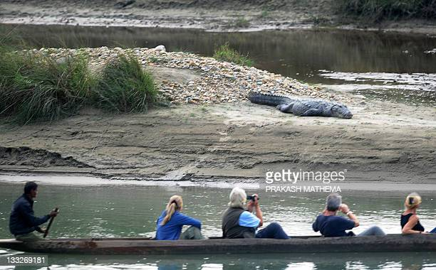 Boat crosses the Rapati river with tourists onboard as they look at a crocodile in Chitwan National Park, around 200 kilometres southwest of...