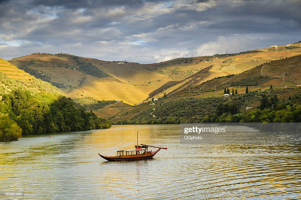 Boat cruising down river at sunset next to terraced vineyards : Stock Photo