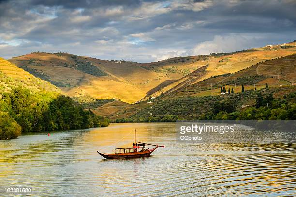 Boat cruising down river at sunset next to terraced vineyards