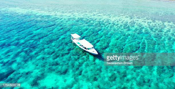 boat floating over beautiful turquoise sea surface over abstract pattern of coral reefs and rocky seabed in bali - schiffstaxi stock-fotos und bilder