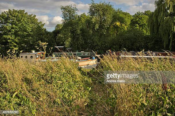 Boat houses on the Lea River in the Walthamstow Marshes East London