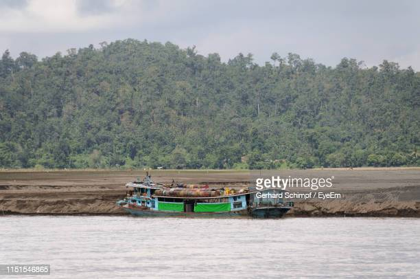 boat in river by trees against sky - gerhard schimpf stock pictures, royalty-free photos & images