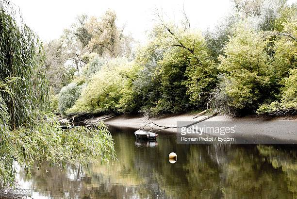 boat in river surrounded by trees - roman pretot stock pictures, royalty-free photos & images