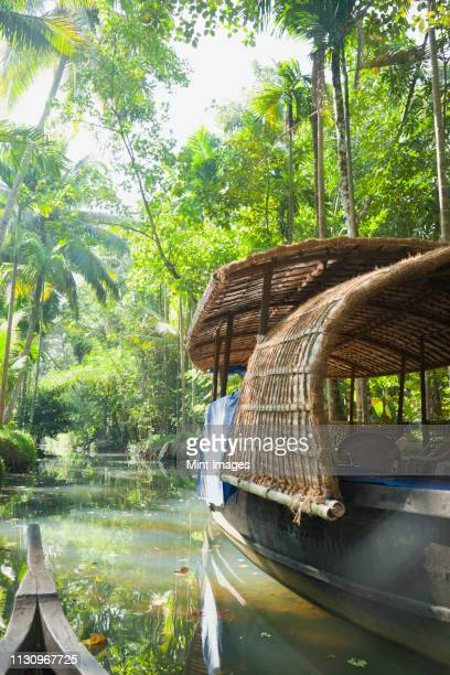 boat in the jungle - kochi india stock pictures, royalty-free photos & images