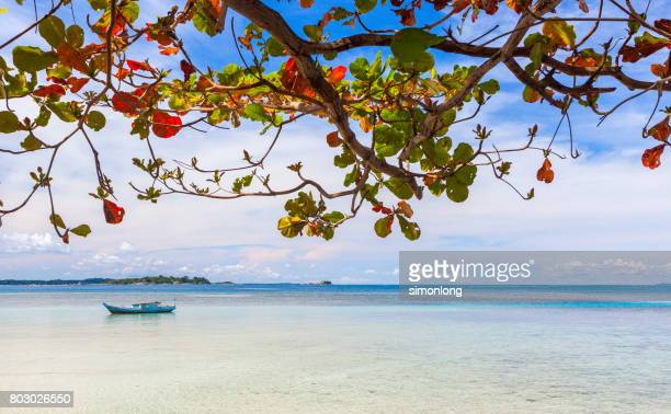 A boat is sailing across the clear ocean in Belitung island, Indonesia