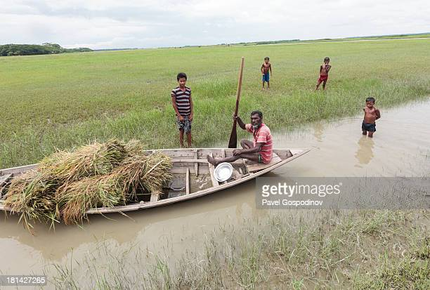 CONTENT] Boat loaded with hay sailing through a small channel in rural Bangladesh Fishermen settlement near Chamdomban village East Side of...