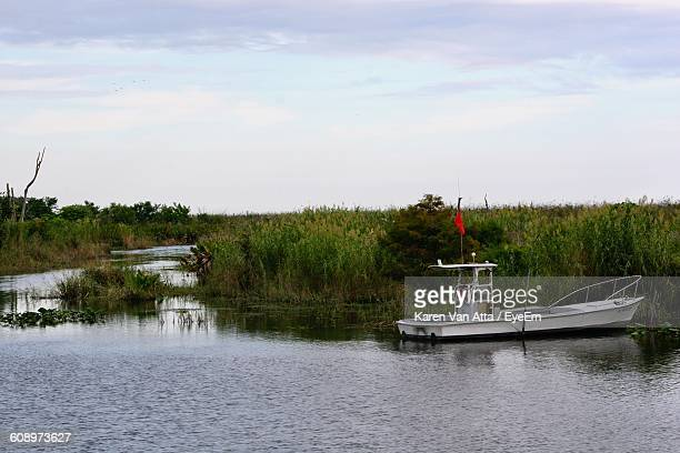 boat moored by field at river - lake okeechobee stock pictures, royalty-free photos & images