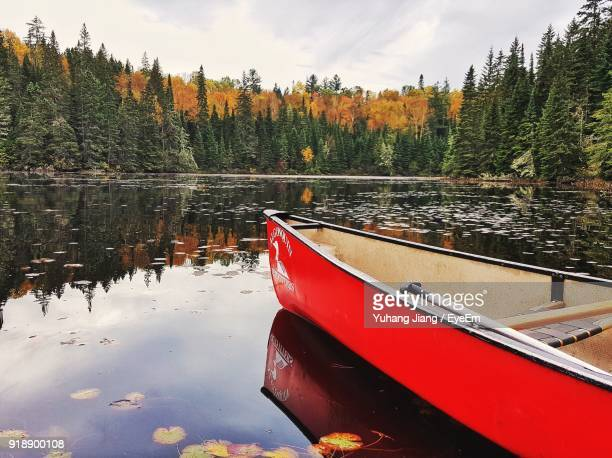 boat moored on river by trees against sky - moored stock pictures, royalty-free photos & images