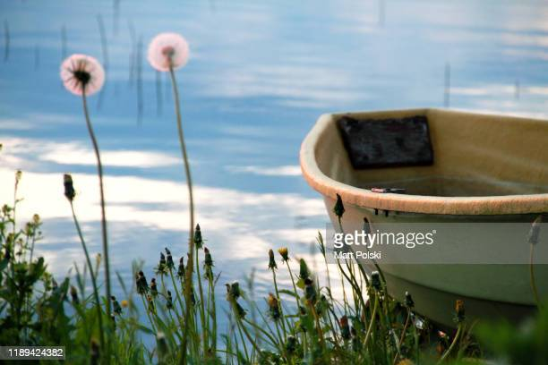 boat on a shore - lakeshore stock pictures, royalty-free photos & images