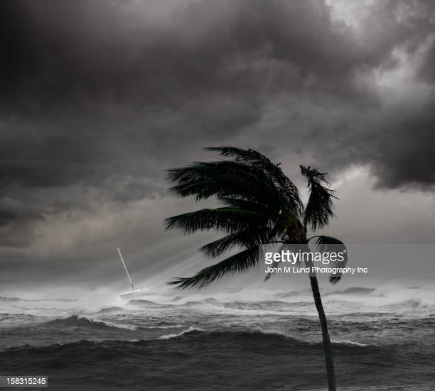 boat on ocean in tropical storm - orkaan stockfoto's en -beelden