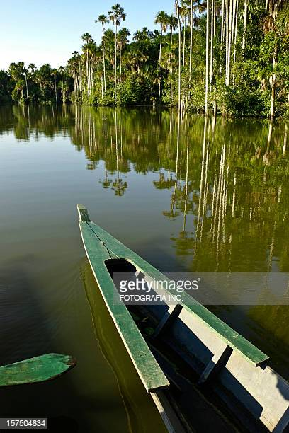 boat on the lake - peruvian amazon stock pictures, royalty-free photos & images