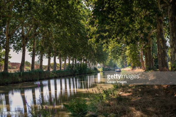 boat on tree-lined canal du midi in south of france - canal du midi photos et images de collection