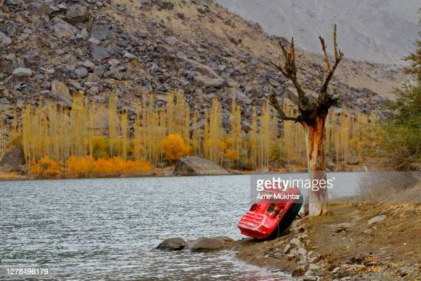 boat parked beside the dry tree near lake in autumn season. - skardu stock pictures, royalty-free photos & images