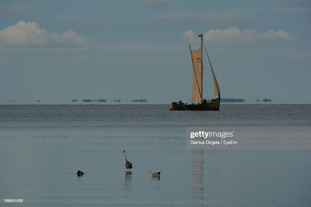 Boat Sailing Against Sky In Sea : Stock Photo