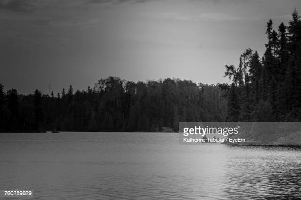 Boat Sailing On River By Trees Against Sky