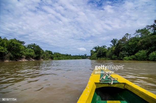 boat sailing on the amazon river