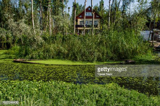A boat submerged in waters of Dal lake on September 12 2018 in Srinagar the summer capital of Indian administered Kashmir India Kashmir the Muslim...